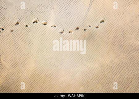 Haut de page vue aérienne de traces empreintes sur dunes de sable dans le désert Banque D'Images