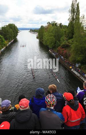 Journée d'ouverture de la fête nautique, Seattle, Washington State, USA. Course d'aviron de regarder la foule par Montlake Cut passage entre le lac Washington et le lac Union. (Usage éditorial uniquement) Banque D'Images