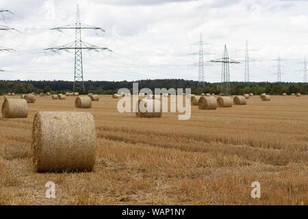 Après la récolte de foin de blé restent ensembles pendant un moment sur le terrain Banque D'Images