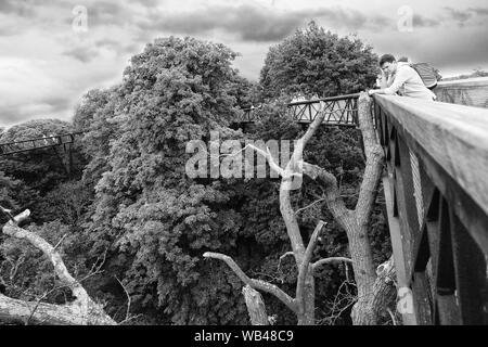 Treetop walkway, Kew Gardens, Londres Banque D'Images