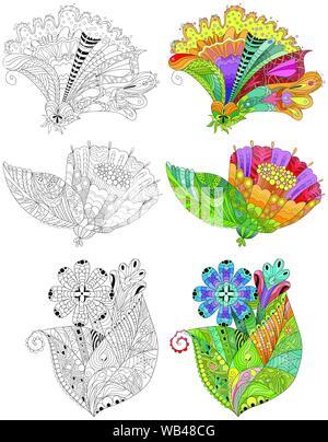 Fleurs de style zentangle aux lignes épurées pour conception de t-shirt, tatouage et autres décorations. Jeu de couleurs et de contours Banque D'Images