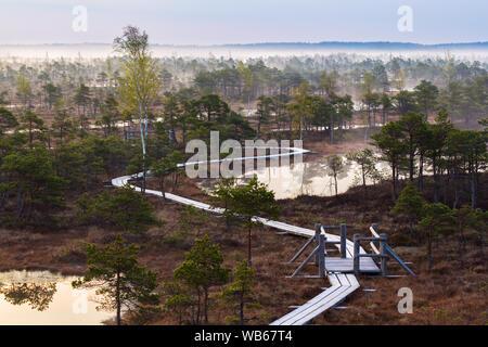 Vue panoramique de marécage à wooden path Banque D'Images