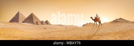 Camel en désert de sable près de pyramides au coucher du soleil. Banque D'Images