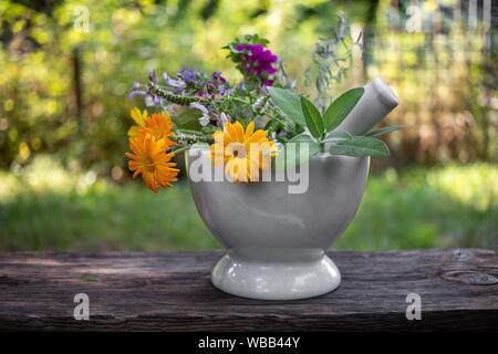 Le Calendula, sauge sclarée et autres plantes médicinales dans un mortier, à l'extérieur. Banque D'Images