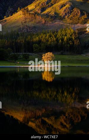 Dernière lumière sur la lande, Lake District Banque D'Images