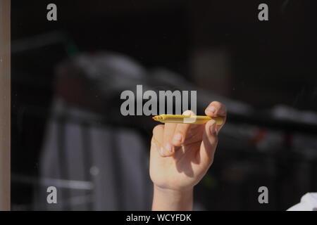 Close-up of Hand Holding Feutre Banque D'Images