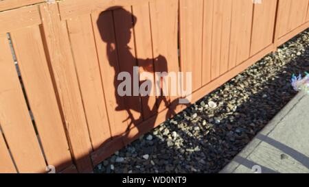 Ombre d'ossature Girl Riding Bicycle On Wooden Fence Banque D'Images