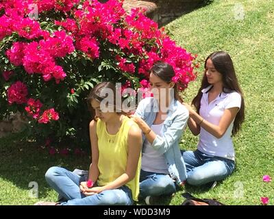 Jeune femme cheveux liage d'Amis de l'autre tout en restant assis à Park Banque D'Images