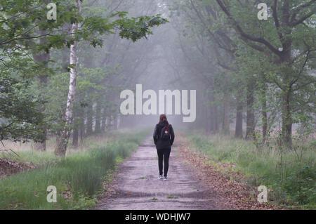 Vue arrière du sac à dos femme marche sur route au milieu des arbres sur terrain en temps de brouillard