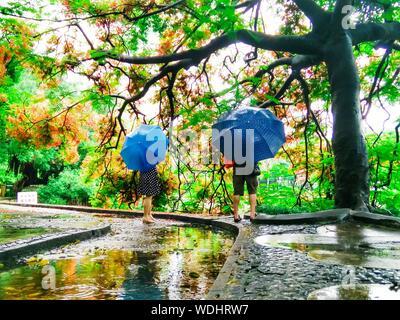 L'homme et de la femme avec des parasols sur sentier d'arbres pendant la saison des pluies Banque D'Images