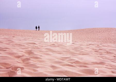 Distance milieu d'amis marchant sur le sable contre Ciel clair dans le Desert Banque D'Images