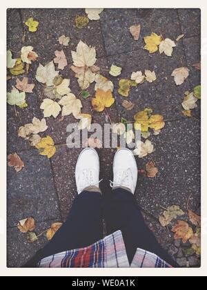 Portrait de l'homme debout sur le trottoir avec les feuilles tombées