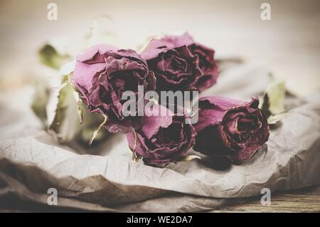 Close-up of Roses fanées sur papier brun Banque D'Images