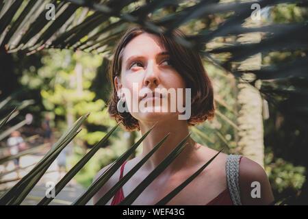 Les filles et les plantes: portrait d'une belle femme parmi les feuilles vertes. Apprécier, aimer la nature concept: jeune femme se distingue parmi les palmiers tropicaux quitter Banque D'Images