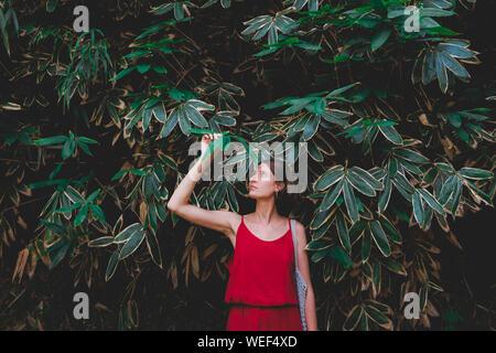 Les filles et les plantes: portrait d'une belle femme en robe rouge sur fond vert naturel. Apprécier, aimer la nature concept: jeune femme se tient dans Banque D'Images