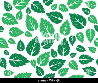 Les feuilles fraîches de menthe motif de fond vecteur Banque D'Images