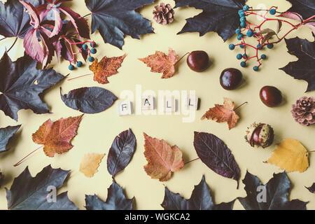 Mot de l'automne et la composition des feuilles d'automne et les châtaignes à cheval sur un fond jaune. Concept de l'automne. Vue de dessus, copiez l'espace. Banque D'Images