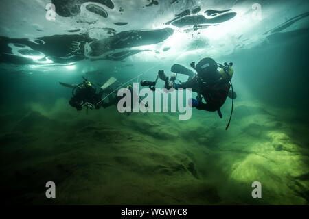 Low Angle View Of Scuba Divers Swimming In River Banque D'Images