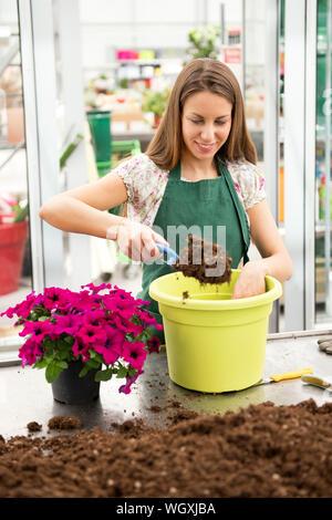 Jeune femme rempotage d'une plante pétunia en plaçant le sol dans un pot vert avec une petite truelle à partir d'un tas sur la table dans une pépinière dans un emploi co Banque D'Images