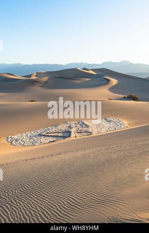 Télévision Mesquite sand dunes in Death Valley National Park, California, États-Unis d'Amérique, Amérique du Nord