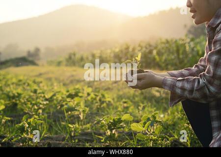 Portrait Farmer Holding Sapling alors que tapi à Farm Banque D'Images