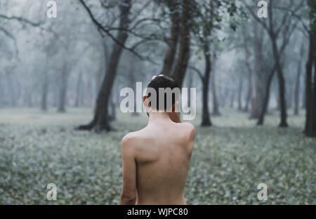 Vue arrière du Shirtless Man Standing sur terrain en forêt pendant la saison des pluies Banque D'Images
