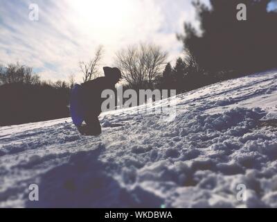 L'homme dans les airs tout en traîneau sur la neige contre le ciel Banque D'Images