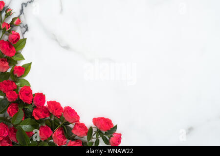 Cadre fait de fleurs roses sur fond de marbre. Composition florale avec des boutons de roses rouges et de feuilles vertes. Maquette de carte de vœux. Banque D'Images