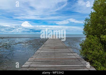 Un long sentier en bois fin de la plage de mangrove. Banque D'Images