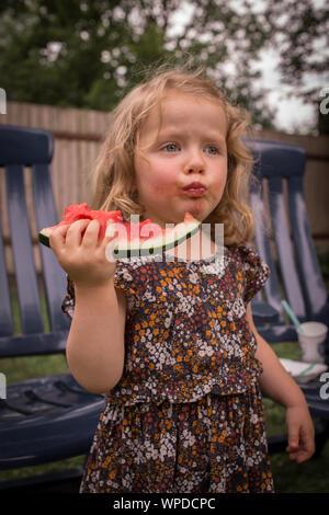 Adorable bambin fille aux cheveux bouclés, manger juteux, délicieux, frais de pastèque, making funny face