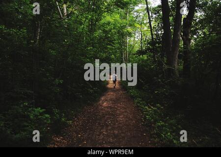 Vue arrière du sac à dos femme marche sur chemin de terre au milieu d'arbres en forêt