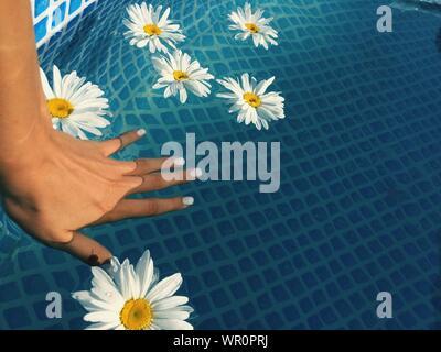 Portrait de femme au milieu de la main de marguerites blanches flottant sur piscine Banque D'Images