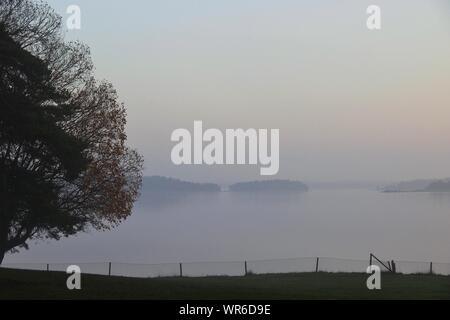 Arbre et Clôture sur rive du lac Misty Banque D'Images
