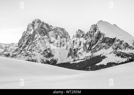 Sassolungo et Sassopiatto pics de montagne en hiver. Plateau d'Alpe di Siusi. Paysage de montagne noir blanc. Les Dolomites De Gardena. Alpes Italiennes Banque D'Images