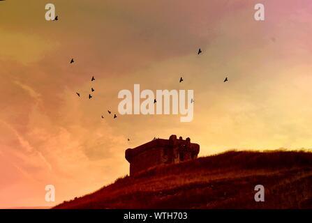 Silhouette of Birds Flying Over Château pendant le coucher du soleil Banque D'Images