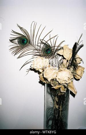 Roses fanées et plumes de paon dans un vase contre le mur blanc Banque D'Images