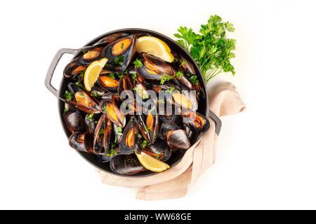 Moules marinière moules marinière, top shot, dans une casserole avec le persil frais sur un fond blanc avec une place pour le texte Banque D'Images