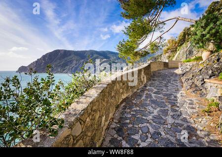 Sentier de randonnée dans les Cinque Terre, Italie sur une journée ensoleillée Banque D'Images