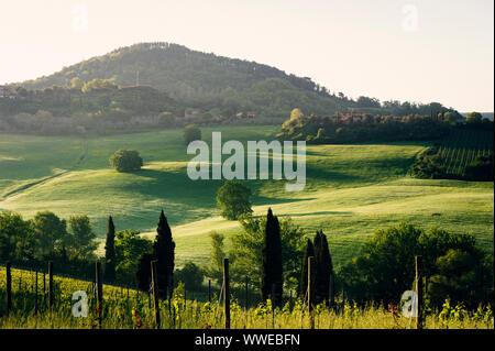 Val d'Orcia en Toscane province de l'Italie Banque D'Images