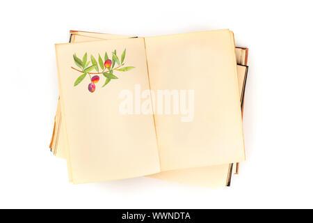 Ouvrir un vieux livre avec une illustration d'une branche d'olivier et un lieu pour le texte, un modèle de conception, tourné par le haut sur un fond blanc Banque D'Images