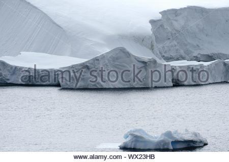 Le vêlage des glaciers et icebergs à Grand Baie Paradise, Péninsule Antarctique Banque D'Images