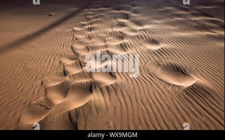 Des empreintes de pas dans les dunes de sable Banque D'Images
