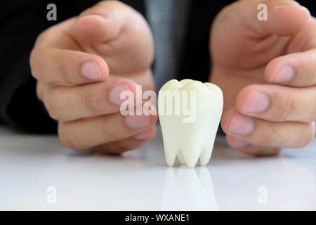 Concept dentaire,molaire Banque D'Images