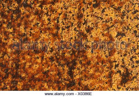 La texture de couleur rouille Banque D'Images