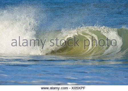 Déferlante, Helgoland, Dune, Mer du Nord, île, Schleswig Holstein, Allemagne. Banque D'Images