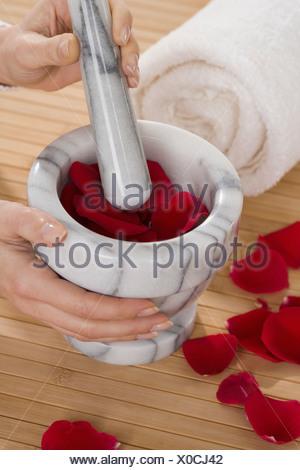 Des pétales de rose dans le mortier et pilon Banque D'Images