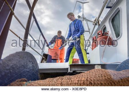 Les pêcheurs avec prise de poissons sur le pont du chalutier Banque D'Images
