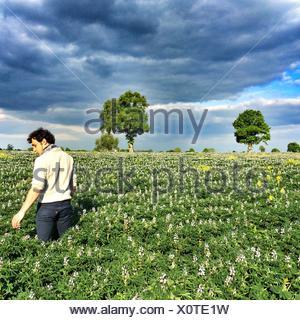 Vue arrière de l'Homme debout dans le champ de fleurs Banque D'Images