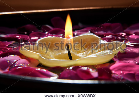 Bougie avec pétales de fleurs Banque D'Images
