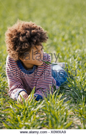 Portrait of boy lying on grass in sunlight Banque D'Images
